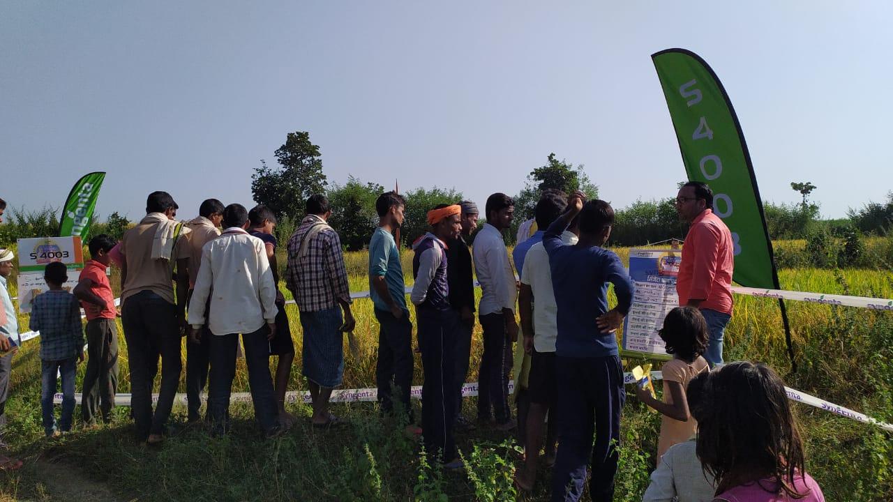 म्योरपुर विकासखंड अंतर्गत फसल प्रदर्शनी का किया गया आयोजन